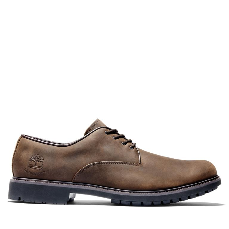 Stormbuck Oxford