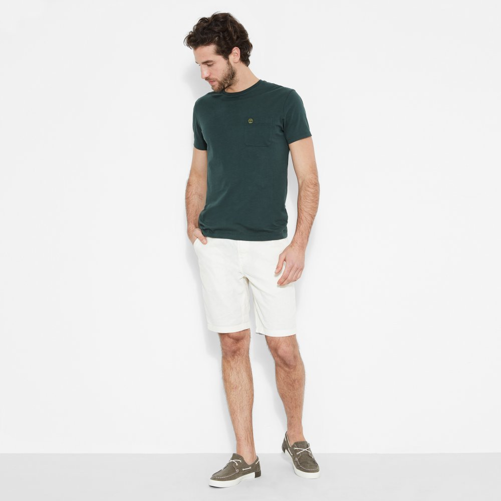 Шорты Squam Lake Chino Short